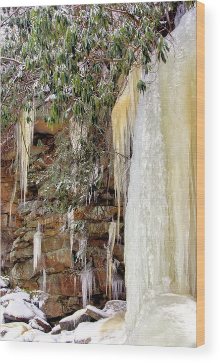 Blackwater Falls State Park Wood Print featuring the photograph Usa, West Virginia, Blackwater Falls by Jaynes Gallery