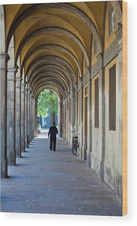 Architecture Wood Print featuring the photograph Europe, Italy, Lucca by Terry Eggers