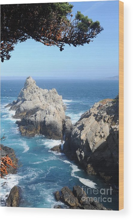 Point Lobos Wood Print featuring the photograph Point Lobos Number Four by Catherine Lau