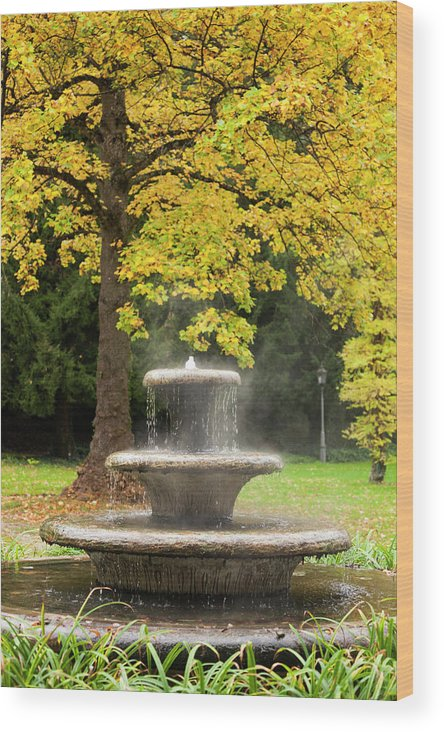 Baden-baden Wood Print featuring the photograph Germany, Baden-wurttemburg by Walter Bibikow