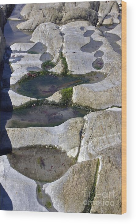 Rock Pool Wood Print featuring the photograph Coastal Rock Pools by Dr Keith Wheeler