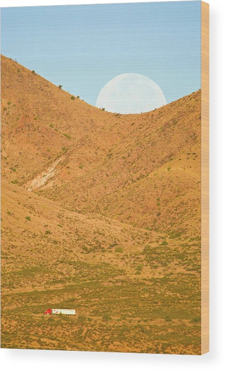 Bosque Del Apache Wood Print featuring the photograph Usa, New Mexico, Bosque Del Apache by Jaynes Gallery