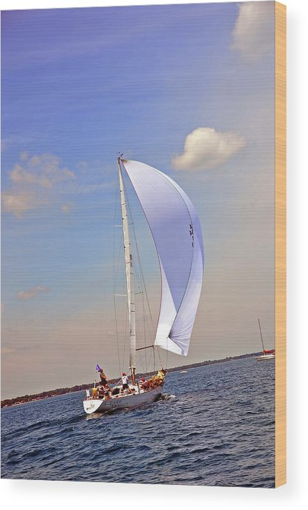 Bayview Yacht Club Wood Print featuring the photograph Fast Tago by Randy J Heath