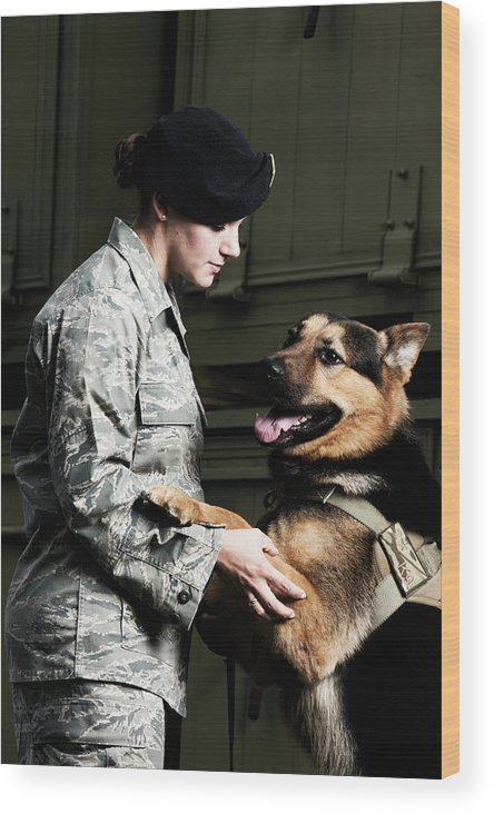 Airplane Hangar Wood Print featuring the photograph A Caucasian, Female Air Force Security by Stacy Pearsall