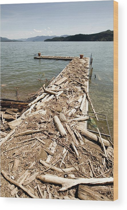 Absence Wood Print featuring the photograph A Dock Covered With Driftwood by Woods Wheatcroft