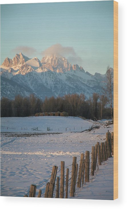 Wyoming Wood Print featuring the photograph A Winter Scene Of A Snowy Field, Fence by Mat Rick Photography
