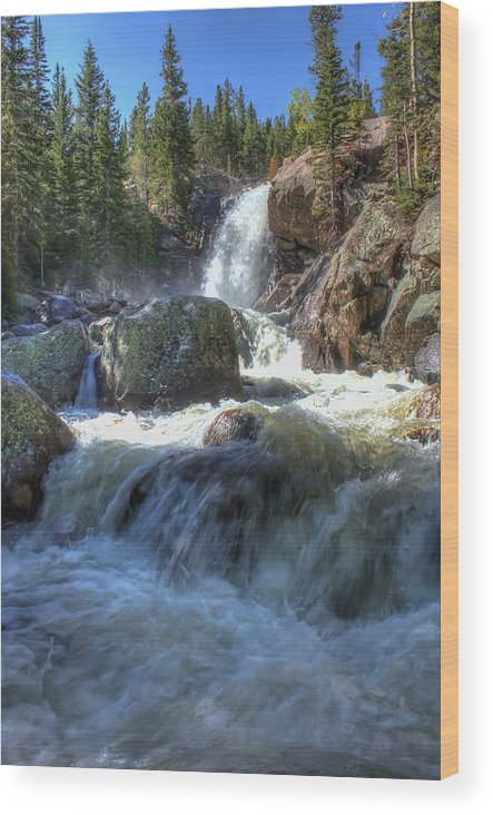 Waterfalls Wood Print featuring the photograph Alberta Falls by Perspective Imagery