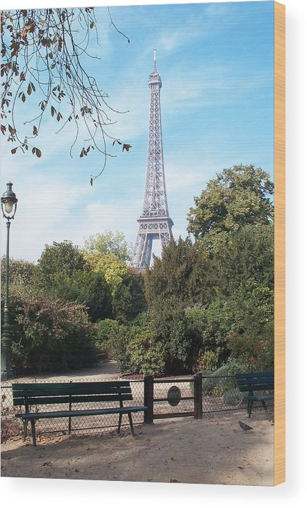 Eiffel Tower Wood Print featuring the photograph At Last by Barbara McDevitt