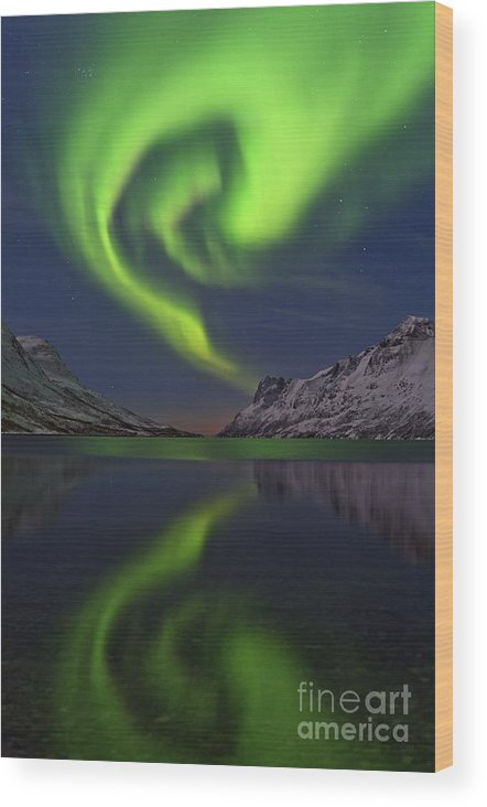 Arctic Wood Print featuring the photograph Aurora Borealis, Norway by Babak Tafreshi
