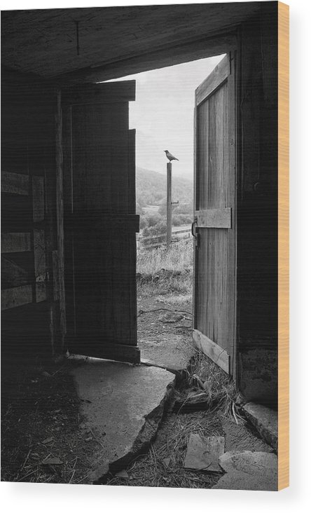Black And White Wood Print featuring the photograph Barn Door - View From Within - Old Barn Picture by Gary Heller