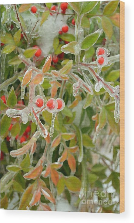Nature Wood Print featuring the digital art Winter Berries On Ice by Eva Kaufman