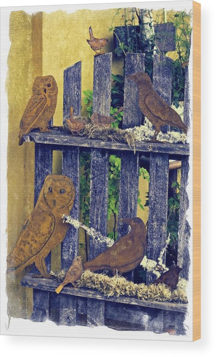 Wheeler Wood Print featuring the photograph Birds Of A Feather Stay Together by Image Takers Photography LLC - Carol Haddon
