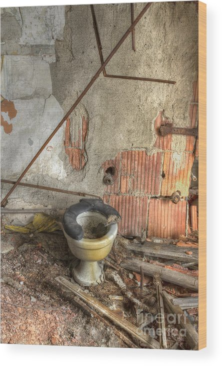 Toilet Wood Print featuring the photograph Broken Seat by Margie Hurwich