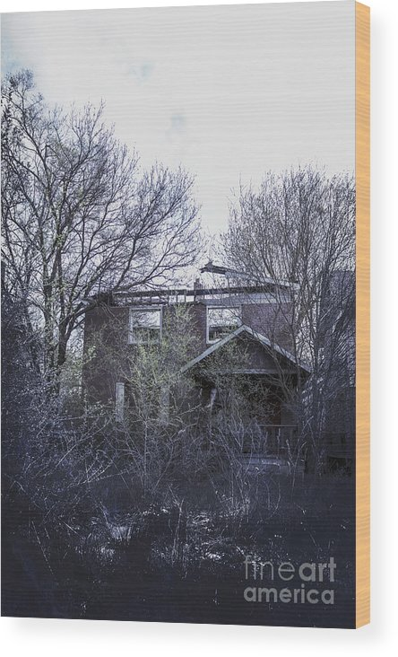 House Wood Print featuring the photograph Burned Out by Margie Hurwich