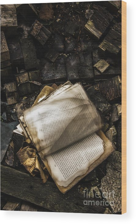 Book Wood Print featuring the photograph Burning Books by Margie Hurwich