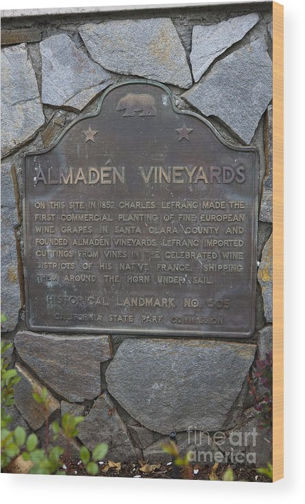 Almaden Vineyards Wood Print featuring the photograph Ca-505 Almaden Vineyards by Jason O Watson