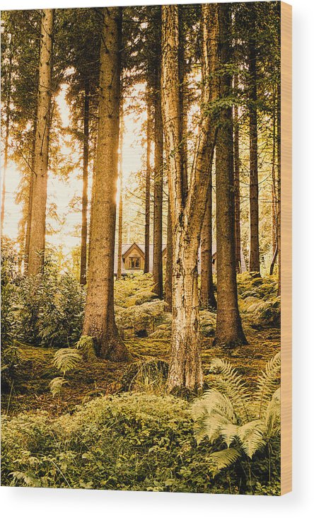 Cabin Wood Print featuring the photograph Cabin In The Woods by Innershadows Photography