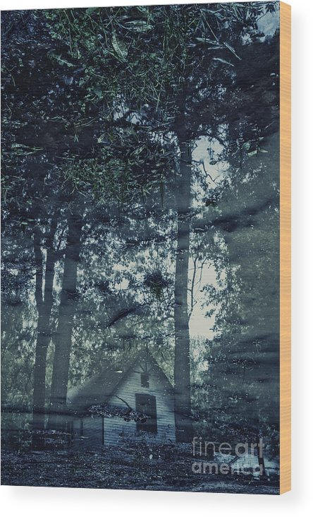 House Wood Print featuring the photograph Cabin In The Woods by Margie Hurwich