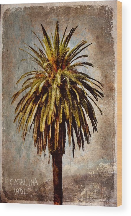 Palm Wood Print featuring the mixed media Catalina 1932 Postcard by Carol Leigh
