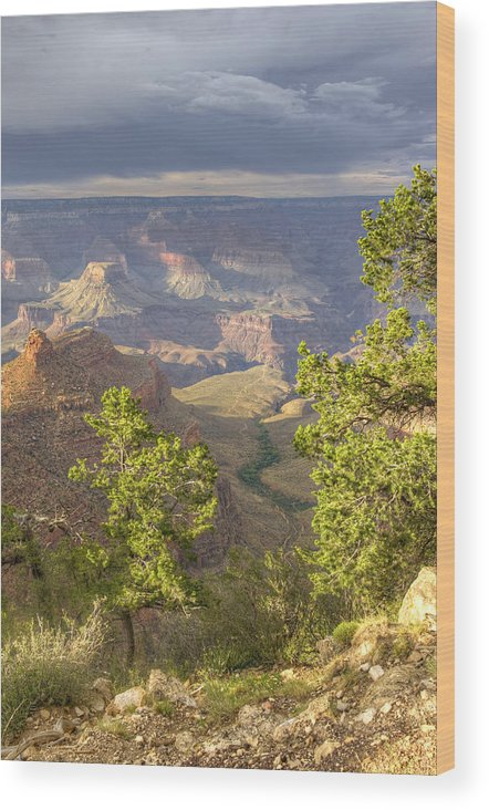 Bright Wood Print featuring the photograph Cloudy Bright Angel Trail II by Ricky Barnard