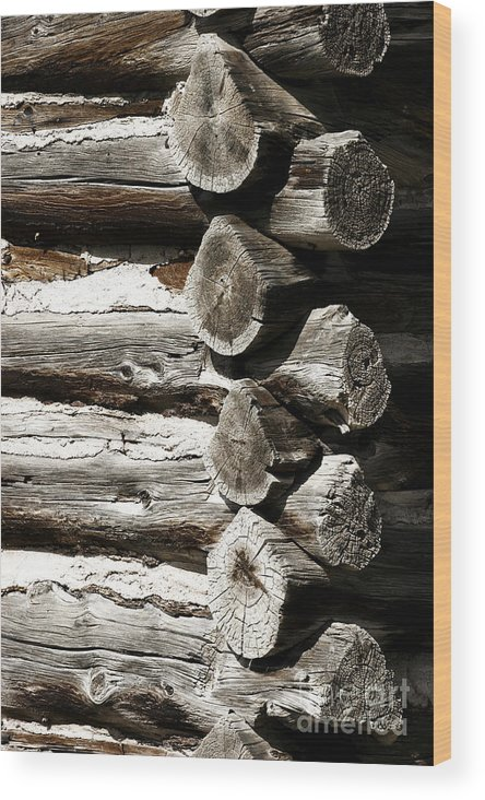 Rustic Wood Print featuring the photograph Corner Logs by Lincoln Rogers