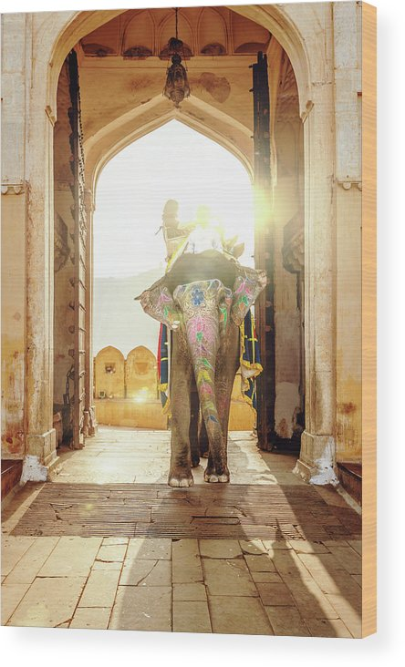 Working Animal Wood Print featuring the photograph Elephant At Amber Palace Jaipur,india by Mlenny