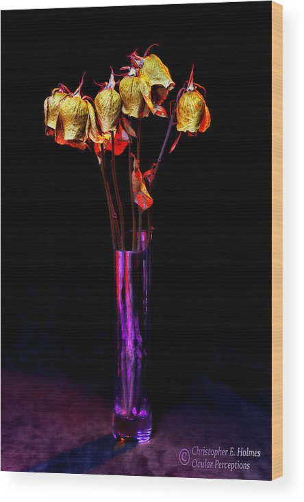Flower Wood Print featuring the photograph Faded Long Stems by Christopher Holmes