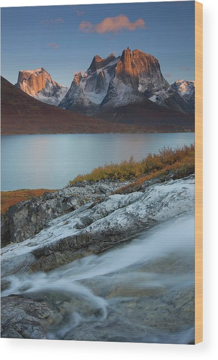 Alpenglow Wood Print featuring the photograph Fall Colors In Tasermiut Fiord by Peter Essick