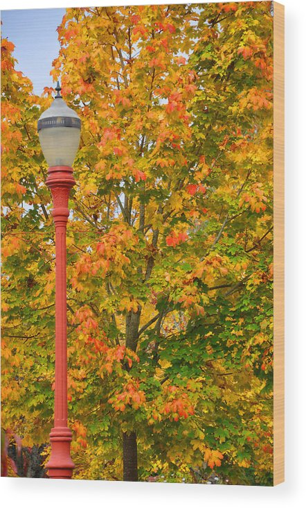 Lamppost; Autumn; Fall; Fall Colors; Autumn Colors; Yellow Leaves; Orange Leaves; Red Leaves; Seattle; Washington; Pacific Northwest; Issaquah; Trees Autumn Trees; Fall Trees Wood Print featuring the photograph Fall Lamppost by Kirt Tisdale