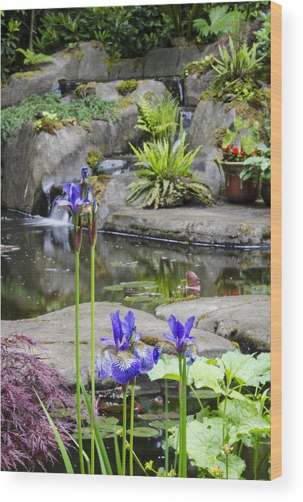 Flower Wood Print featuring the photograph Flags In Bloom by Irene Theriau
