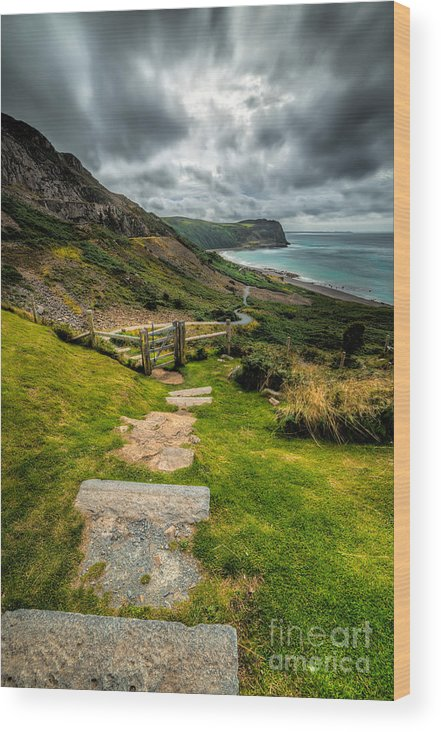Beach Wood Print featuring the photograph Follow The Path by Adrian Evans