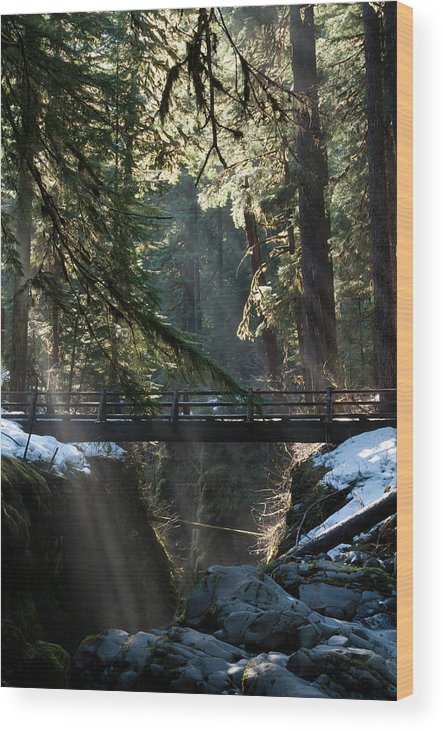 Art Wolfe Wood Print featuring the photograph Footbridge Near Sol Duc Falls, Olympic by Art Wolfe