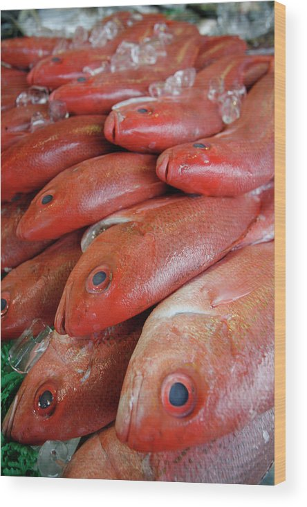 Capitol Wood Print featuring the photograph Fresh Red Snapper At The Fish Market by Chris Pinchbeck