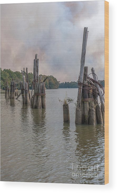 Piling Wood Print featuring the photograph Georgetown Pilings by Dale Powell
