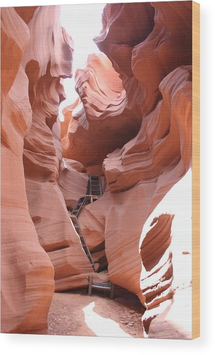 Canyon Wood Print featuring the photograph Get To The Bottom by Christiane Schulze Art And Photography