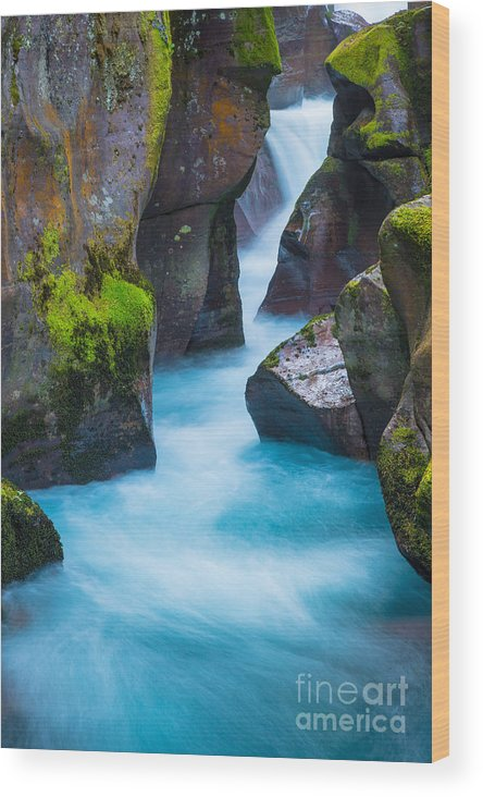 America Wood Print featuring the photograph Glacier Gorge by Inge Johnsson