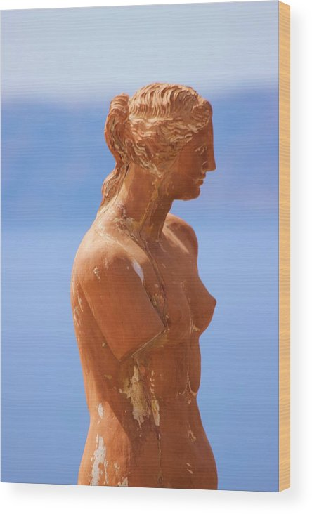 Aphrodite Wood Print featuring the photograph Goddess Of Love by Janice Aponte