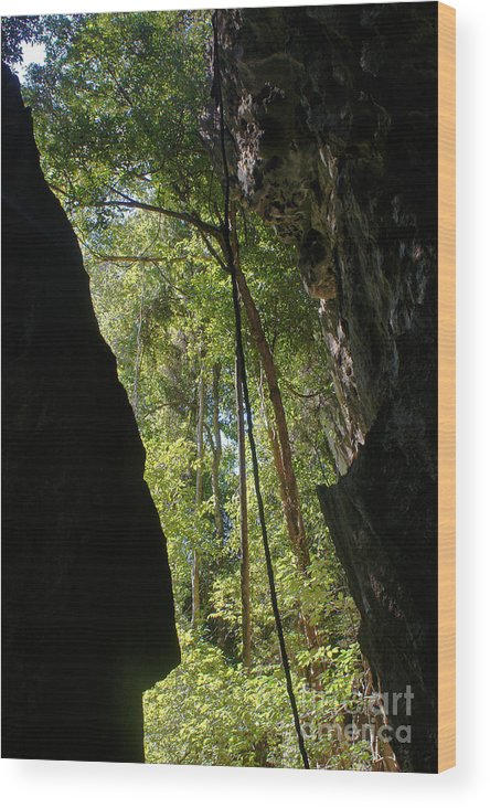 Africa Wood Print featuring the photograph gorge in the Tsingy de Bemaraha Madagascar by Rudi Prott