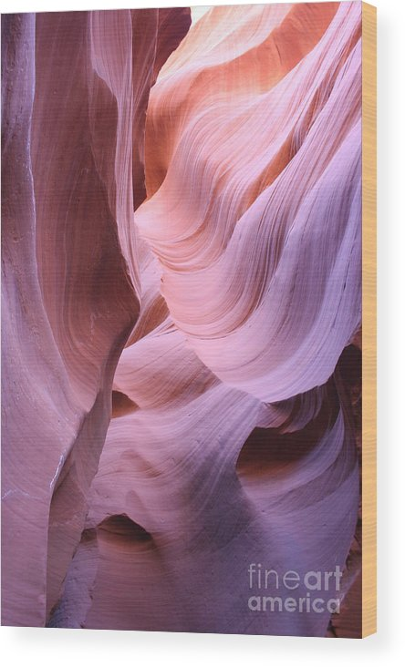Narrow Canyon Wood Print featuring the photograph Graved Sandstone Of Antelope Canyon by Christiane Schulze Art And Photography