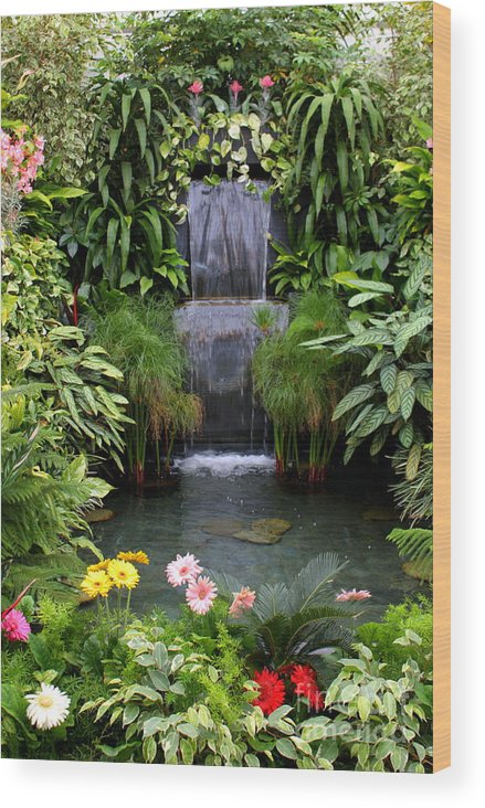 Waterfall Wood Print featuring the photograph Greenhouse Garden Waterfall by Carol Groenen