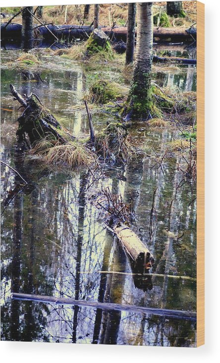 Rider Wood Print featuring the photograph Nature Is Growing Up And Sinking Down by Hilde Widerberg