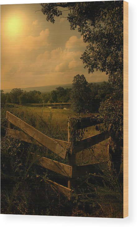 Fence Wood Print featuring the photograph Hanging Out At The Corner by Nina Fosdick