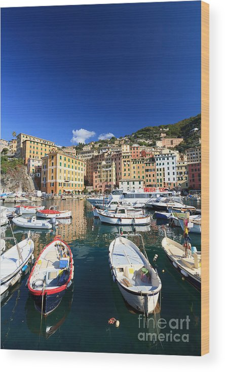 Architecture Wood Print featuring the photograph Harbor With Fishing Boats by Antonio Scarpi