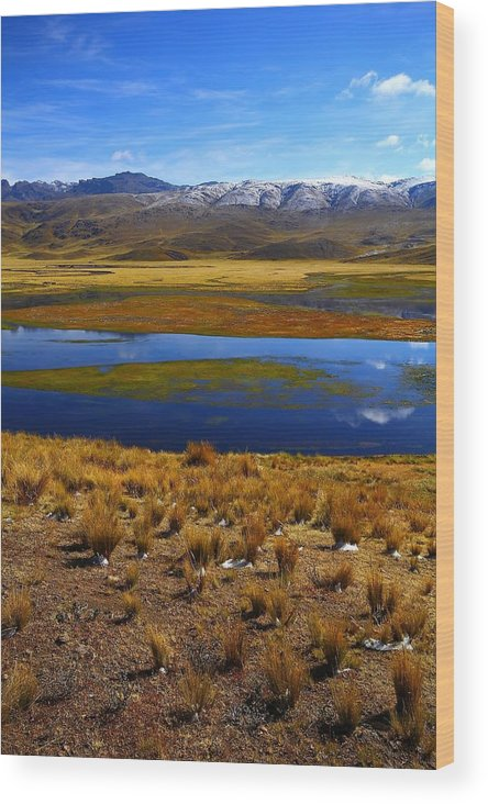 Peru Wood Print featuring the photograph High Altitude Reflections by FireFlux Studios