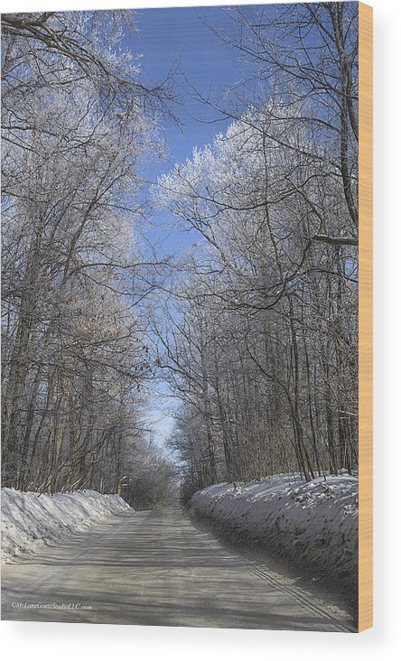 Winterland Wood Print featuring the photograph Hoar Frost On Campground Road by LeeAnn McLaneGoetz McLaneGoetzStudioLLCcom