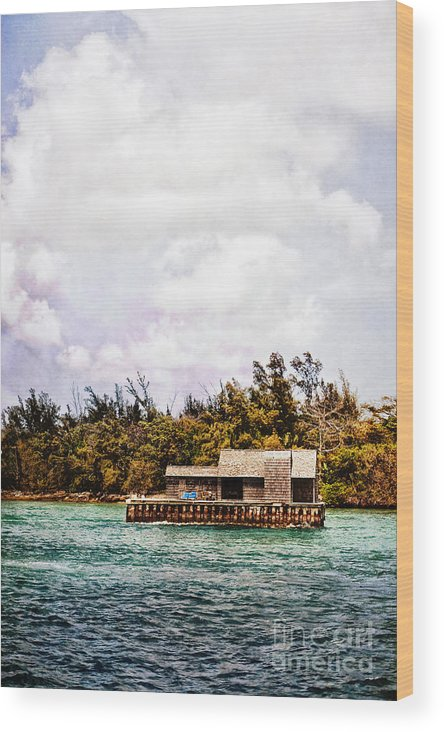 House; Houseboat; Water; Floating; Island; Deserted; Tropical; Waterfront; Bahamas; Shallow; Blue; Sky; Clouds; Deck; Trees; Building; Wood; Chairs; Outside; Outdoors; Exterior; Cottage; Home; Tropics; Ocean; Sea; Lake Wood Print featuring the photograph House Boat by Margie Hurwich