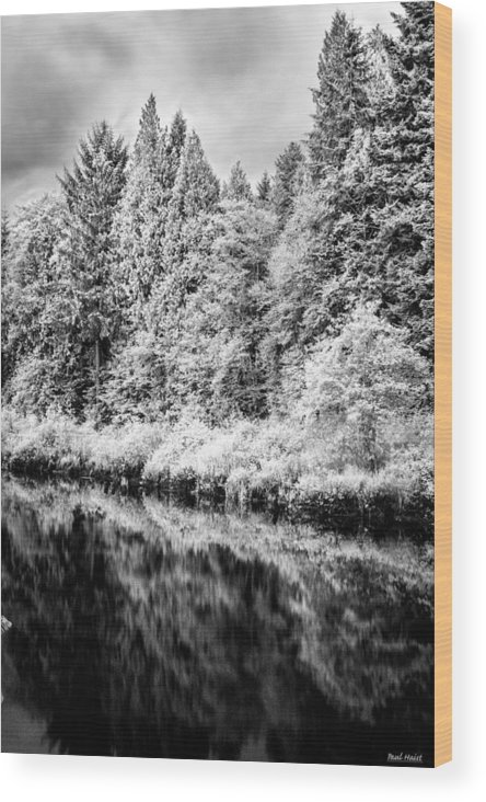 Brownsmead Wood Print featuring the photograph Infrared Trees by Paul Haist