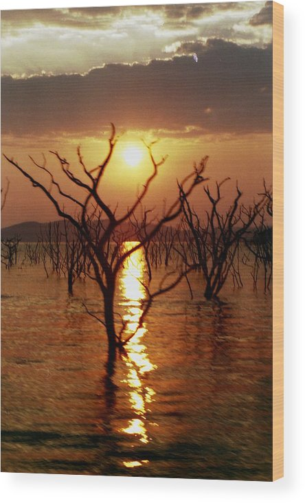 Sunset Wood Print featuring the photograph Kariba Sunset by Jeremy Hayden