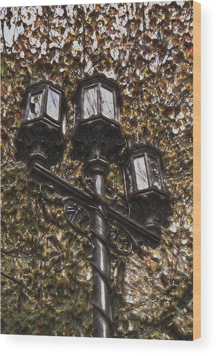 Digital Art Wood Print featuring the photograph Lamp Post In The Fall by T C Hoffman