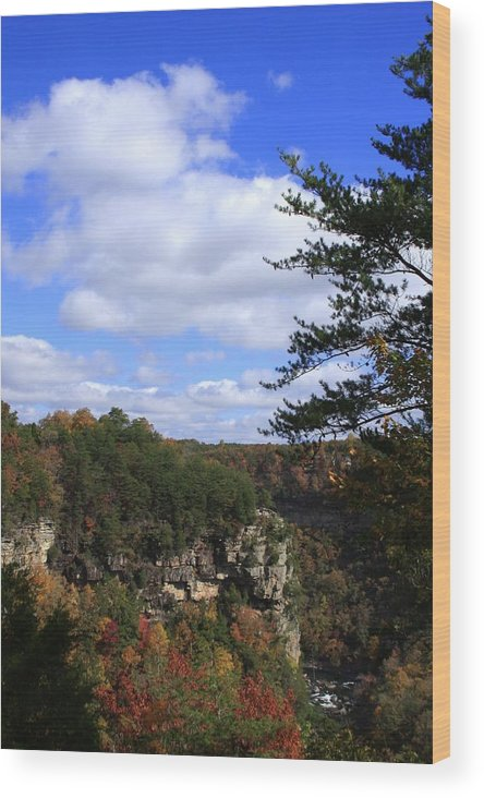 Little River Canyon Wood Print featuring the photograph Little River Canyon Alabama by Mountains to the Sea Photo